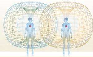 human-heart-torus